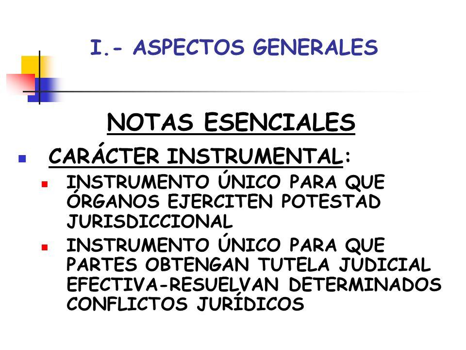 NOTAS ESENCIALES I.- ASPECTOS GENERALES CARÁCTER INSTRUMENTAL: