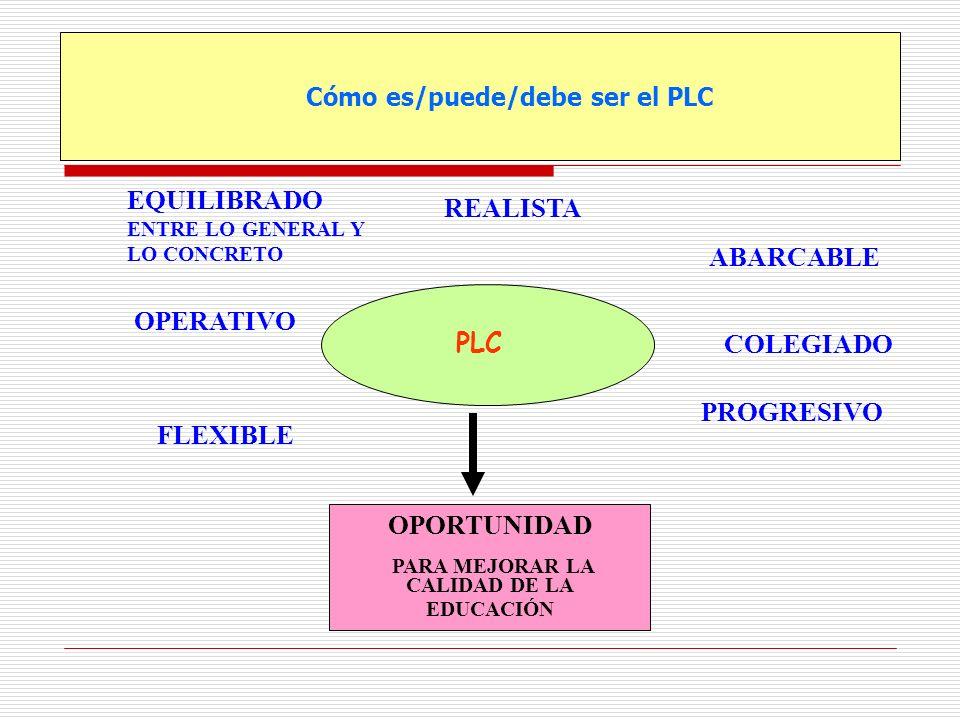 Cómo es/puede/debe ser el PLC