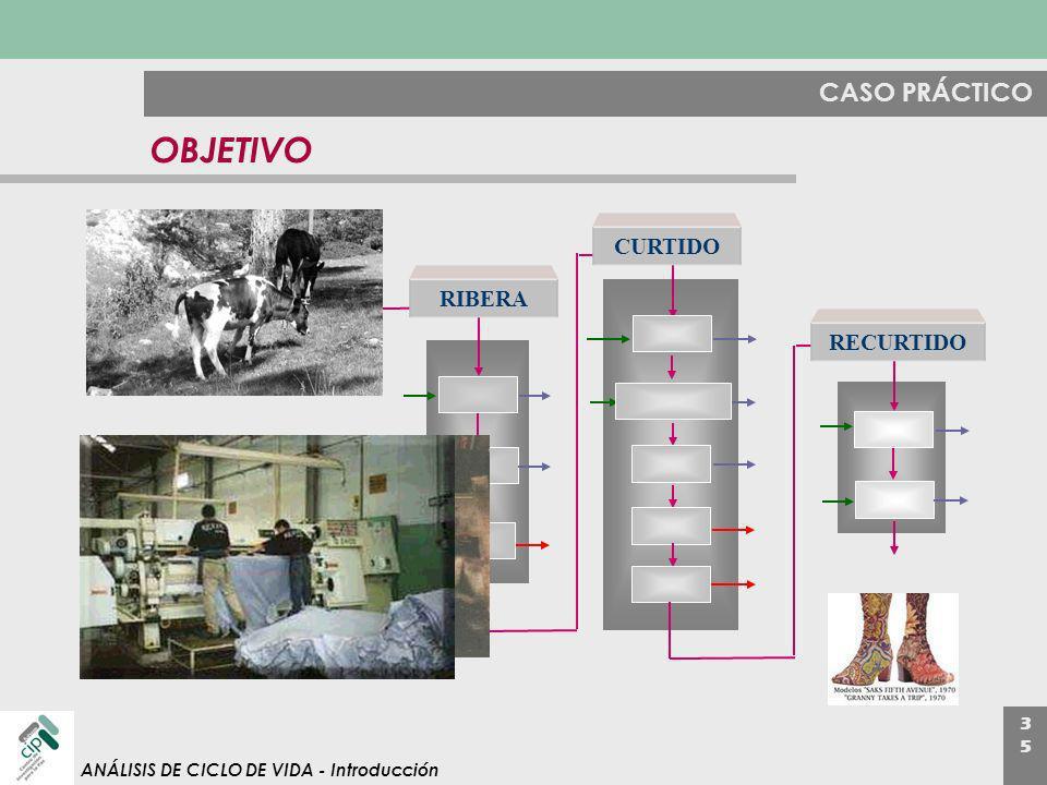 OBJETIVO CASO PRÁCTICO CURTIDO RIBERA RECURTIDO deliming soaking