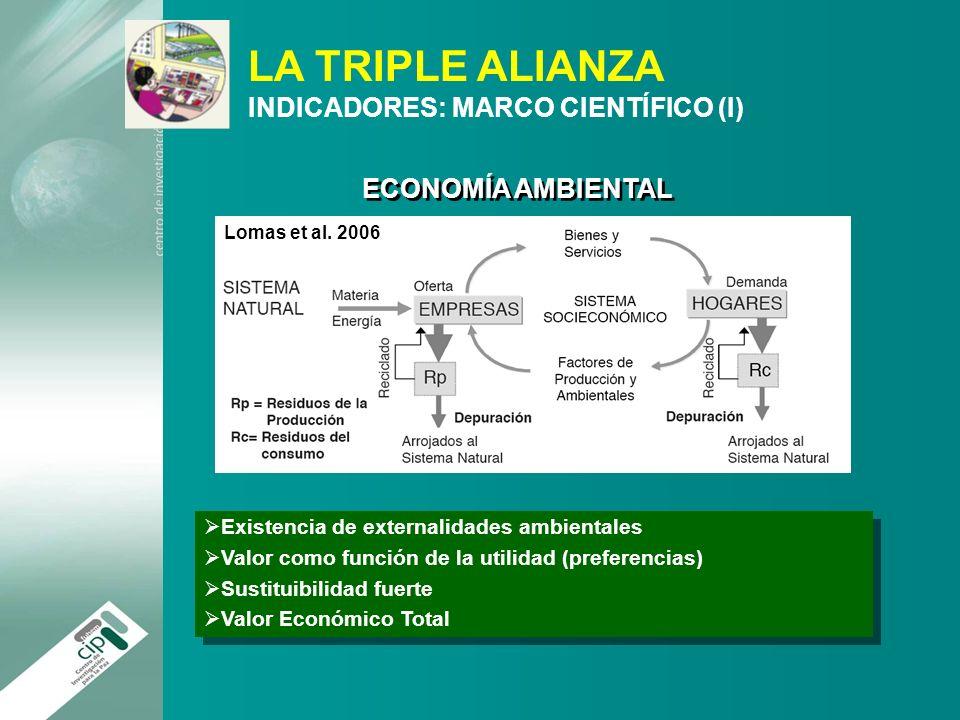 LA TRIPLE ALIANZA INDICADORES: MARCO CIENTÍFICO (I)