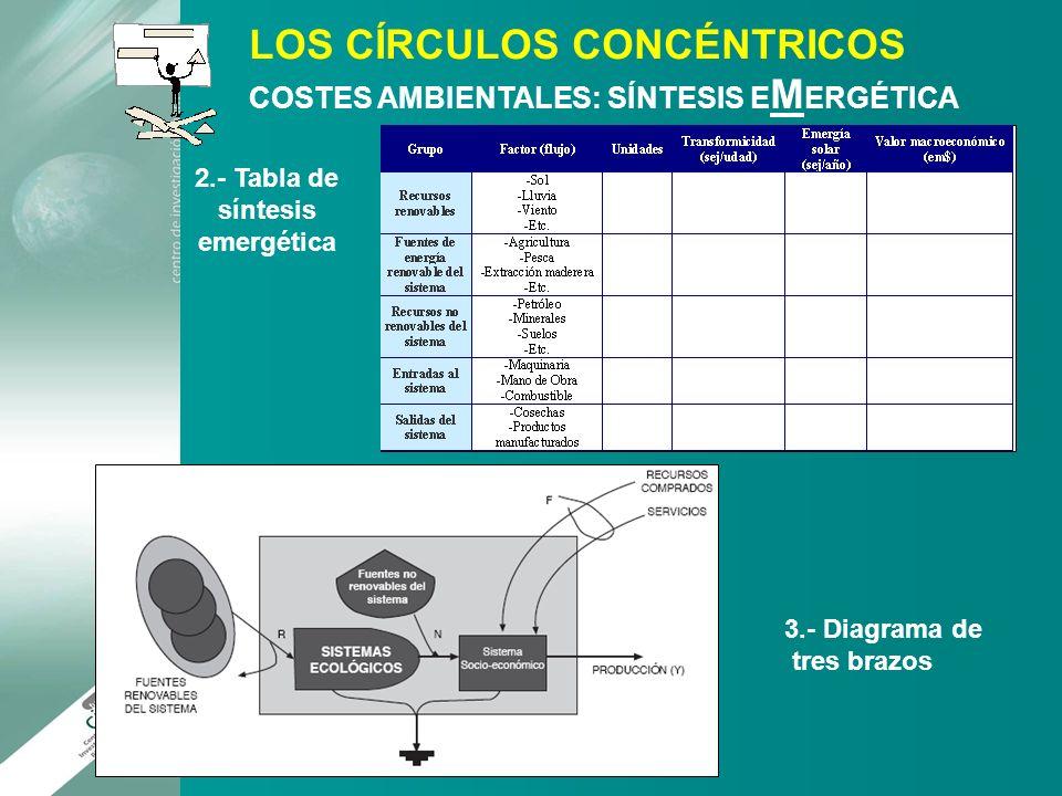 2.- Tabla de síntesis emergética