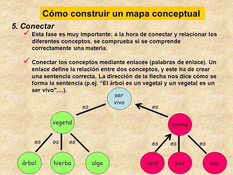 Cómo construir un mapa conceptual