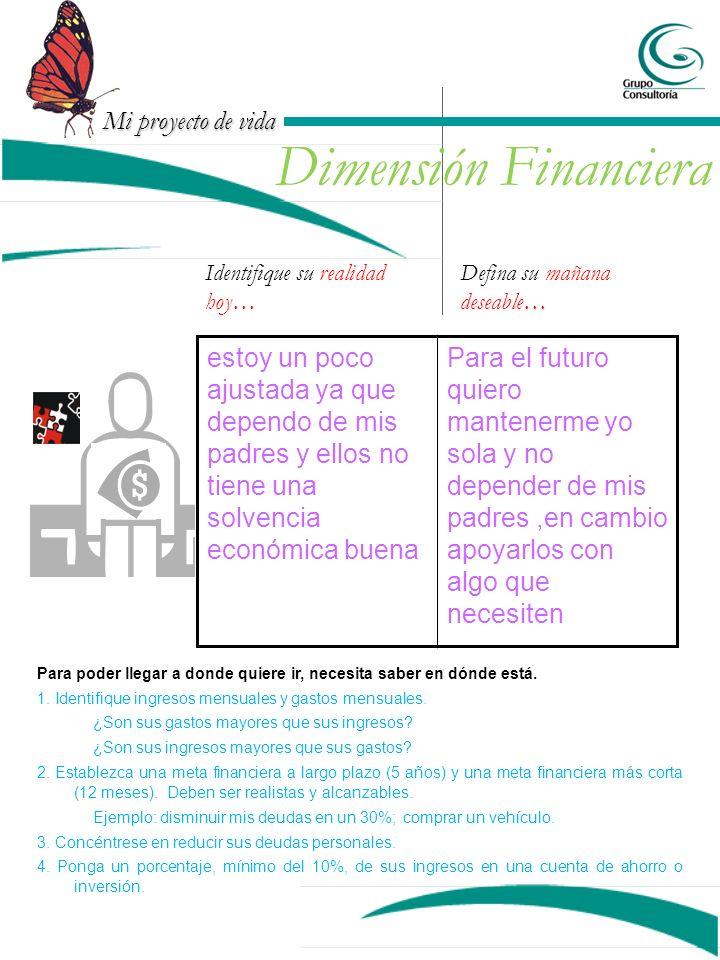 Dimensión Financiera Identifique su realidad hoy… Defina su mañana deseable…