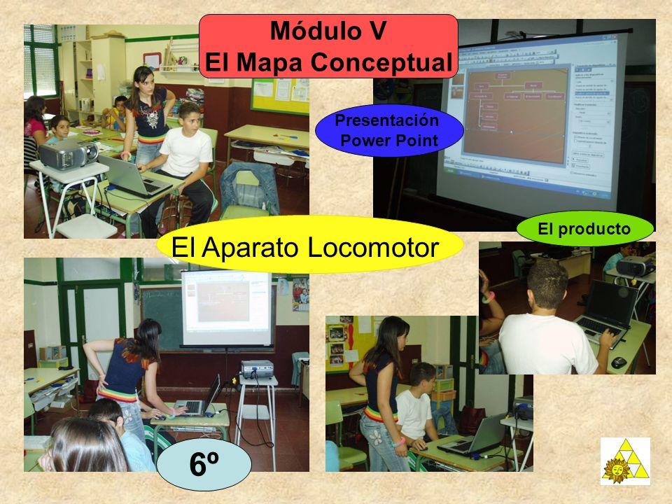 6º El Aparato Locomotor Módulo V El Mapa Conceptual Presentación