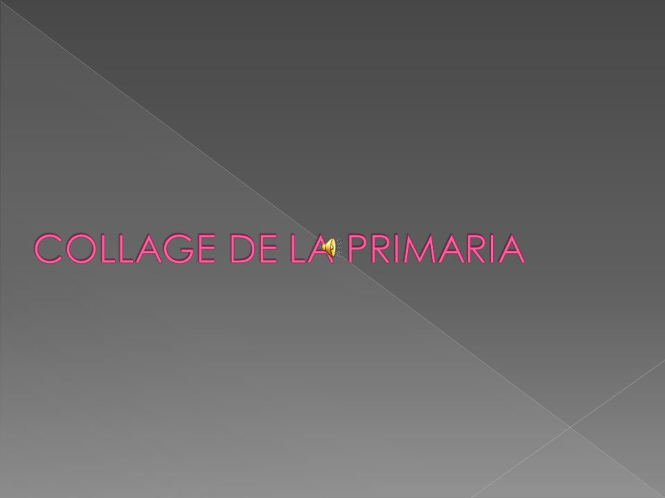 COLLAGE DE LA PRIMARIA