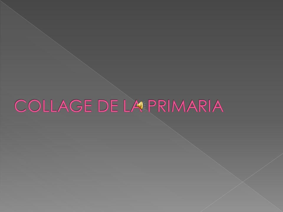COLLAGE DE LA PRIMARIA