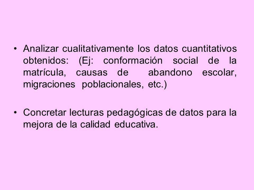 Analizar cualitativamente los datos cuantitativos obtenidos: (Ej: conformación social de la matrícula, causas de abandono escolar, migraciones poblacionales, etc.)