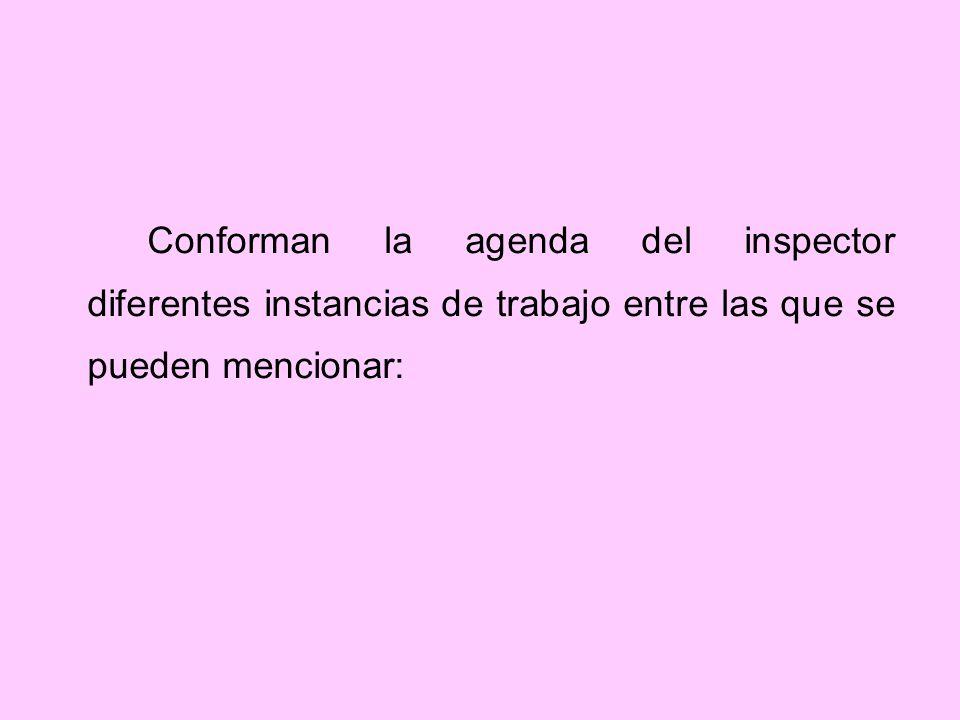 Conforman la agenda del inspector diferentes instancias de trabajo entre las que se pueden mencionar: