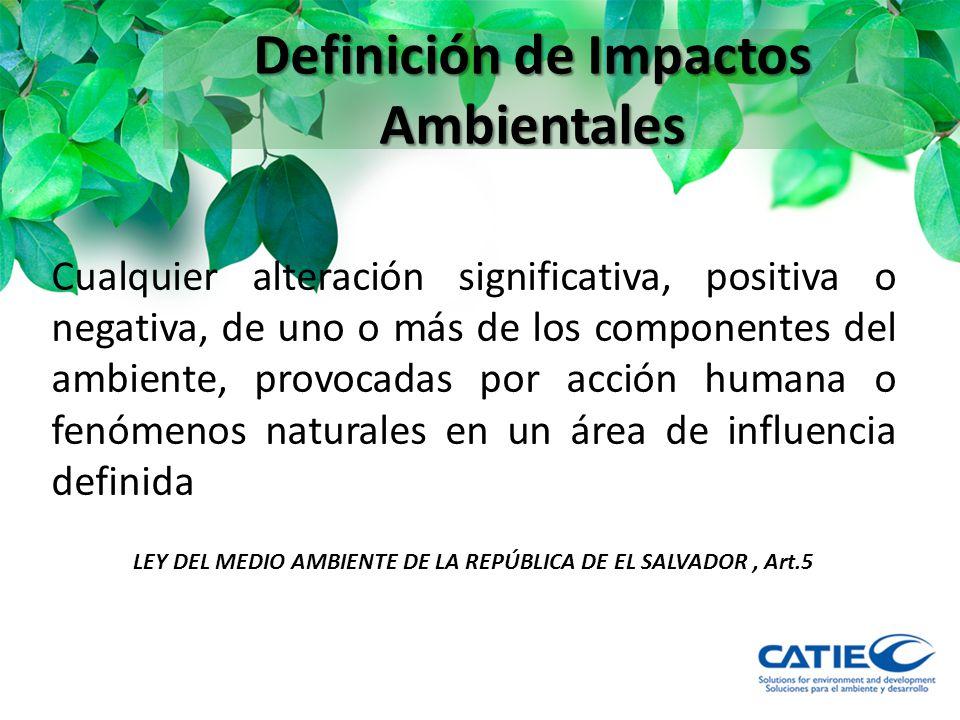 Definición de Impactos Ambientales
