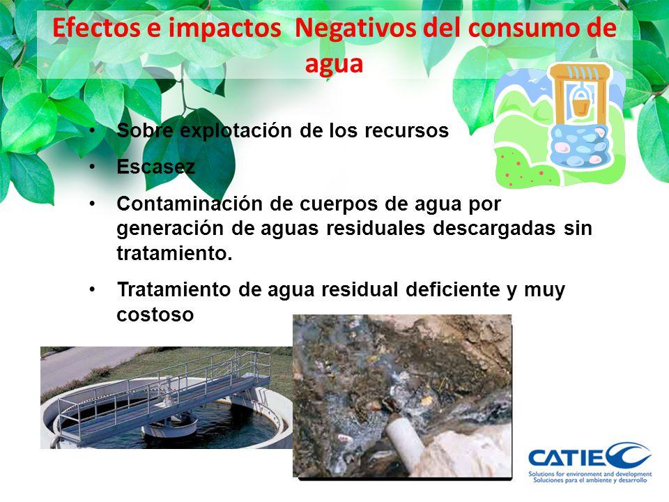 Efectos e impactos Negativos del consumo de agua