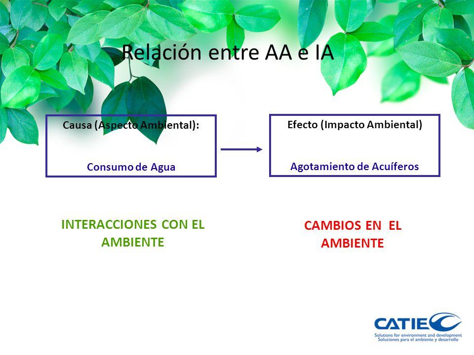 Relación entre AA e IA INTERACCIONES CON EL AMBIENTE