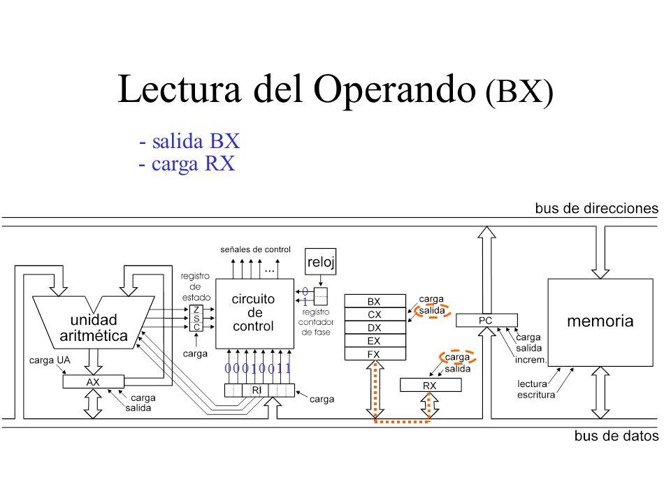 Lectura del Operando (BX)