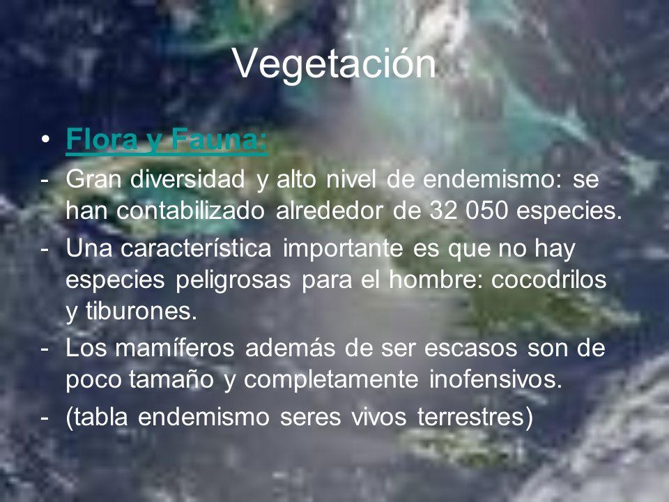 Vegetación Flora y Fauna: