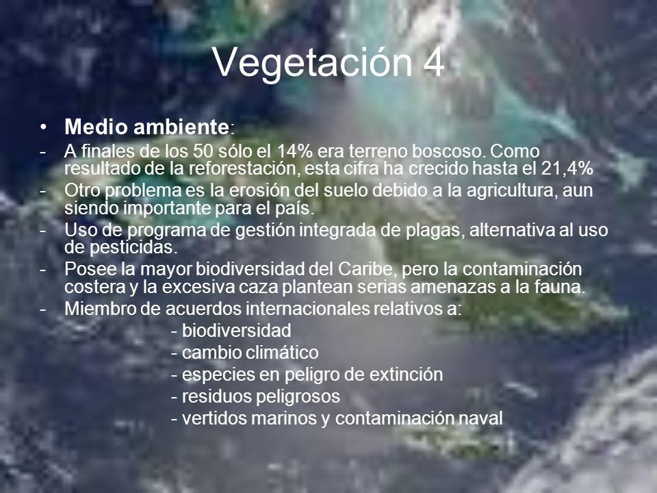 Vegetación 4 Medio ambiente: