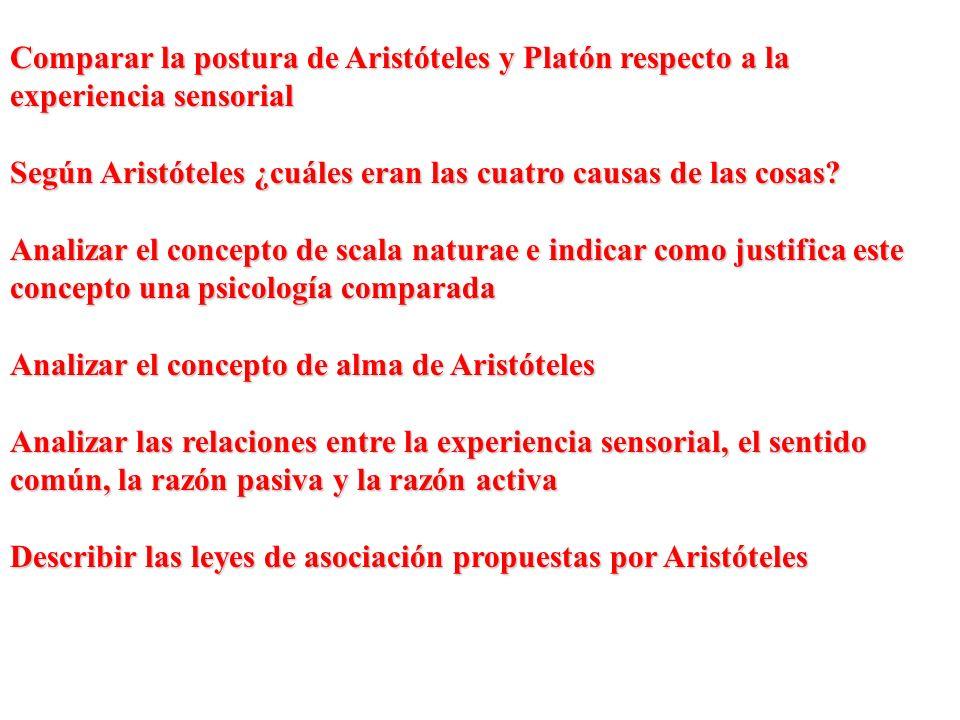 Comparar la postura de Aristóteles y Platón respecto a la experiencia sensorial