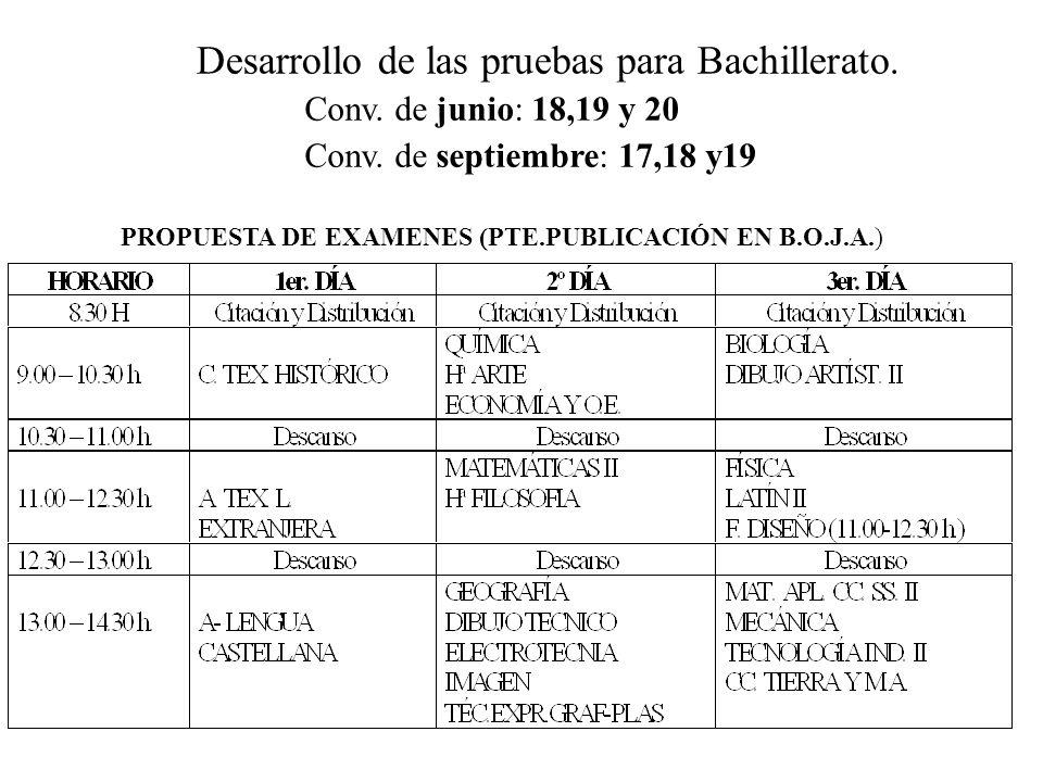 Desarrollo de las pruebas para Bachillerato.