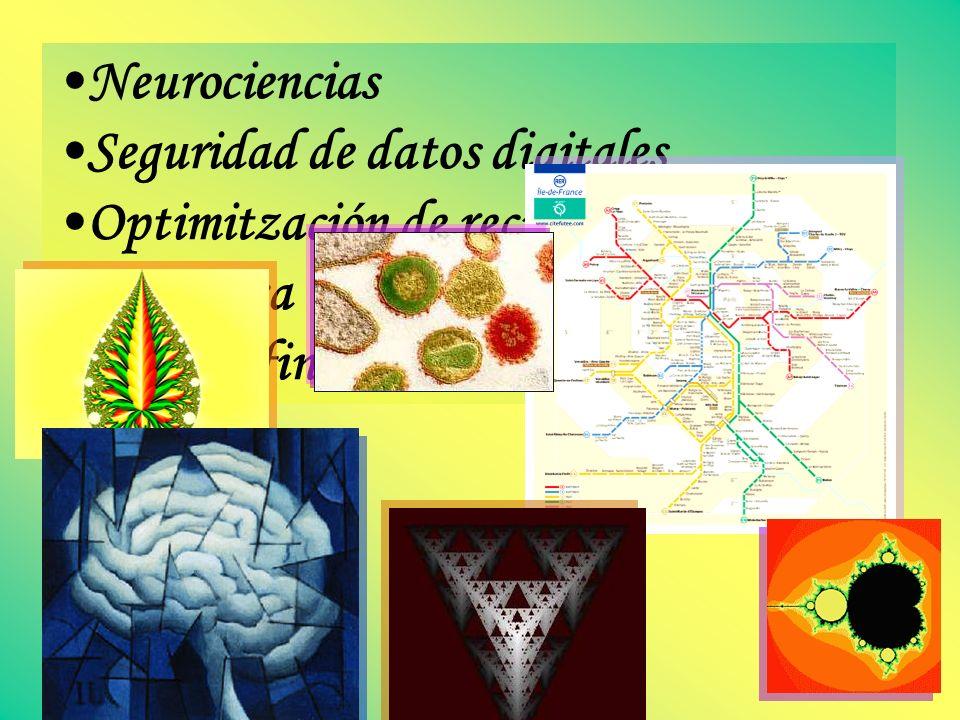 Neurociencias Seguridad de datos digitales Optimitzación de recursos Genómica Riesgos financieros