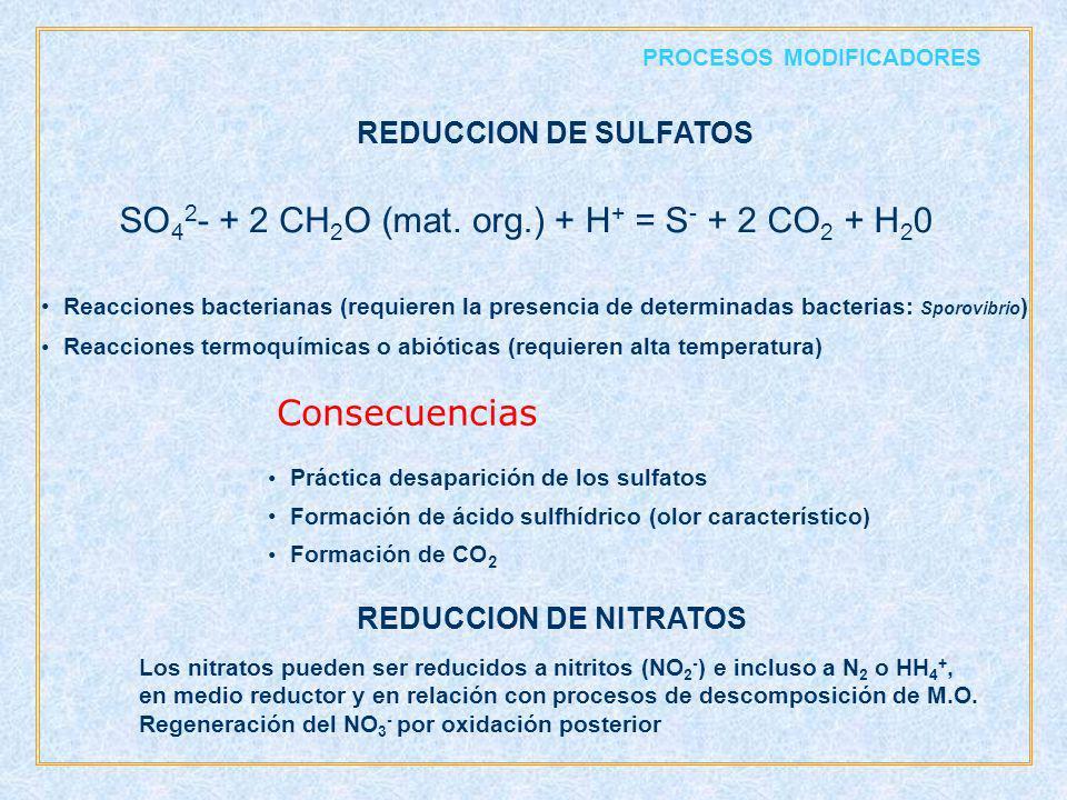 SO - + 2 CH O ( mat . o rg .) + H = S + 2 CO + H Consecuencias