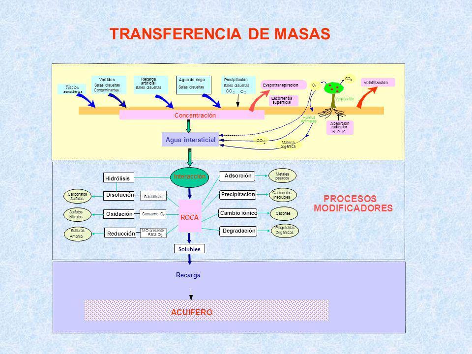 TRANSFERENCIA DE MASAS
