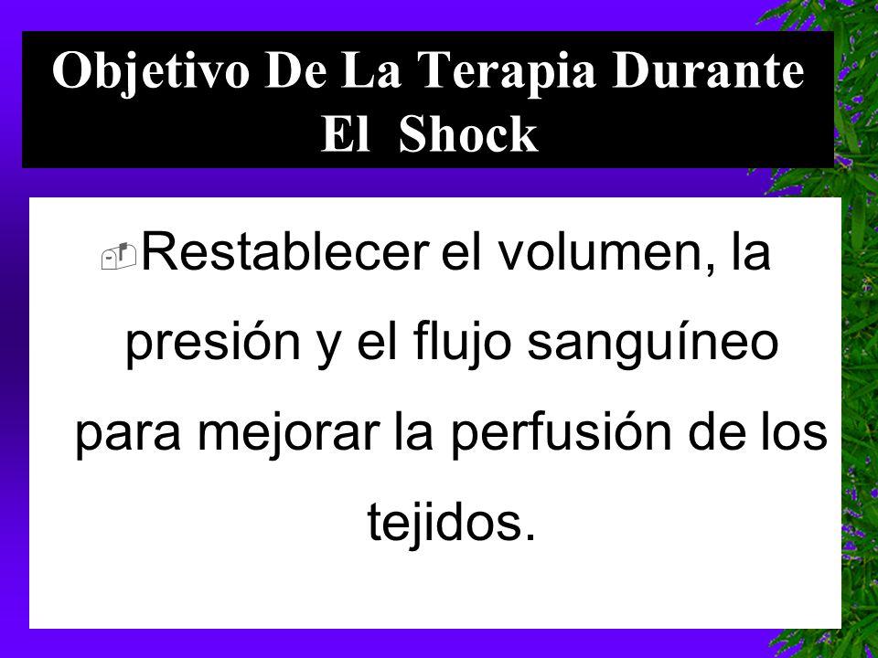 Objetivo De La Terapia Durante El Shock
