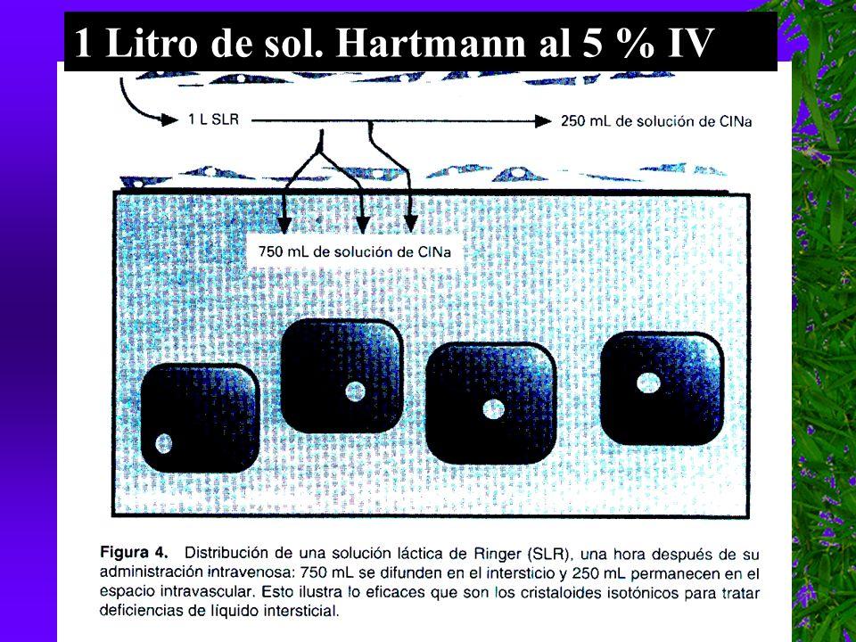 1 Litro de sol. Hartmann al 5 % IV