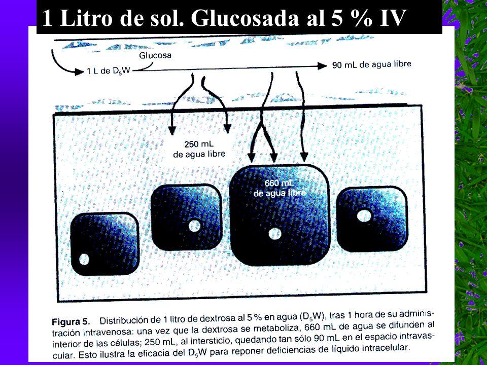 1 Litro de sol. Glucosada al 5 % IV
