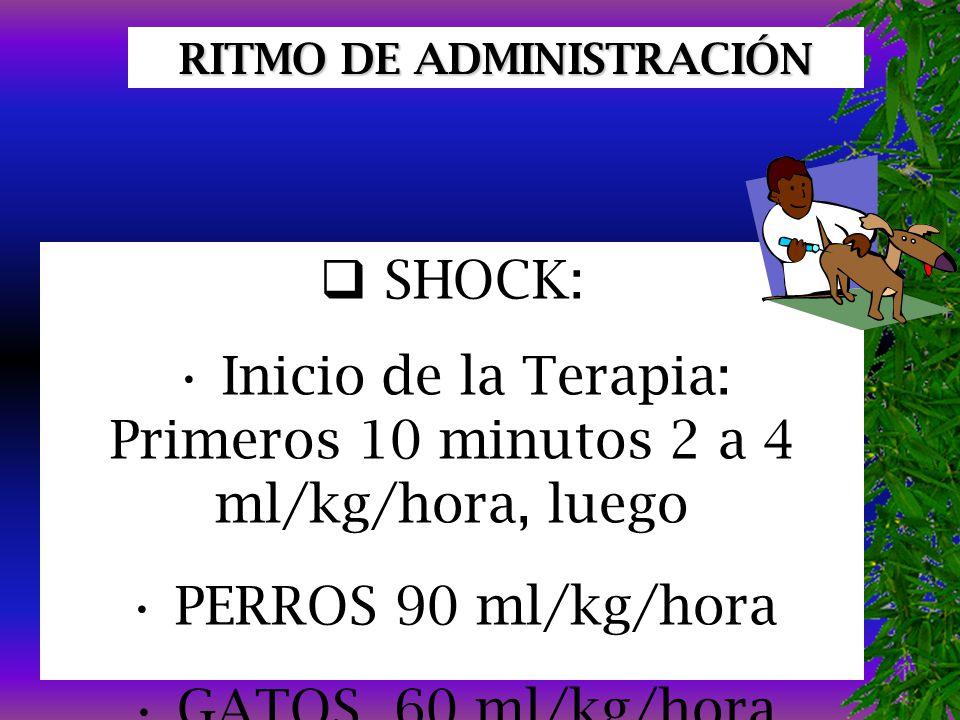 RITMO DE ADMINISTRACIÓN