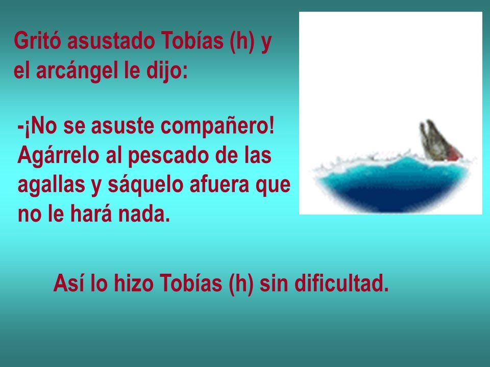 Gritó asustado Tobías (h) y