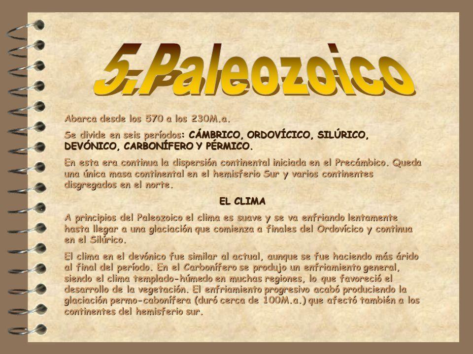 5.Paleozoico Abarca desde los 570 a los 230M.a.