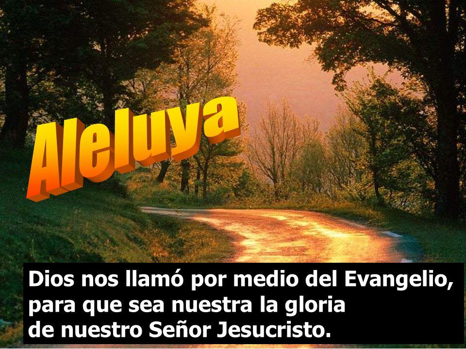 Aleluya Dios nos llamó por medio del Evangelio, para que sea nuestra la gloria de nuestro Señor Jesucristo.