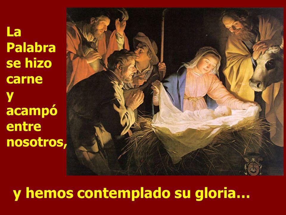 y hemos contemplado su gloria…