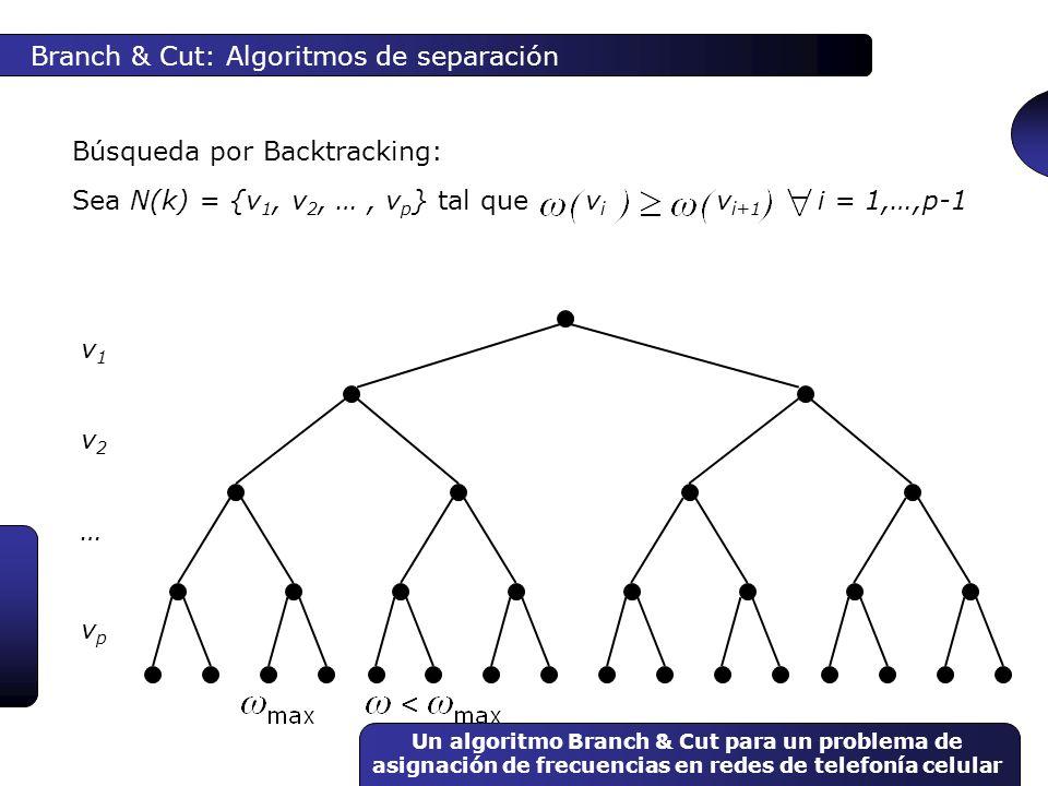 Branch & Cut: Algoritmos de separación