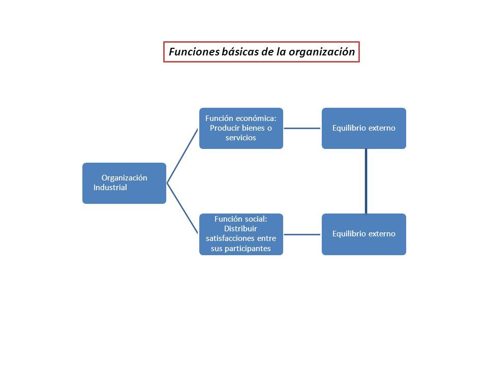 Funciones básicas de la organización