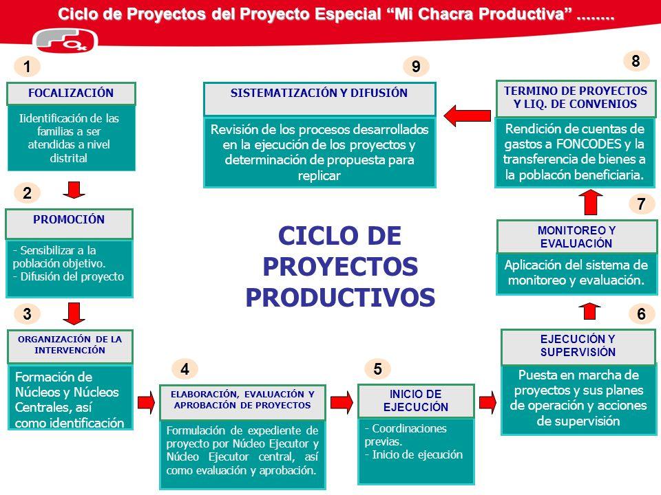 CICLO DE PROYECTOS PRODUCTIVOS