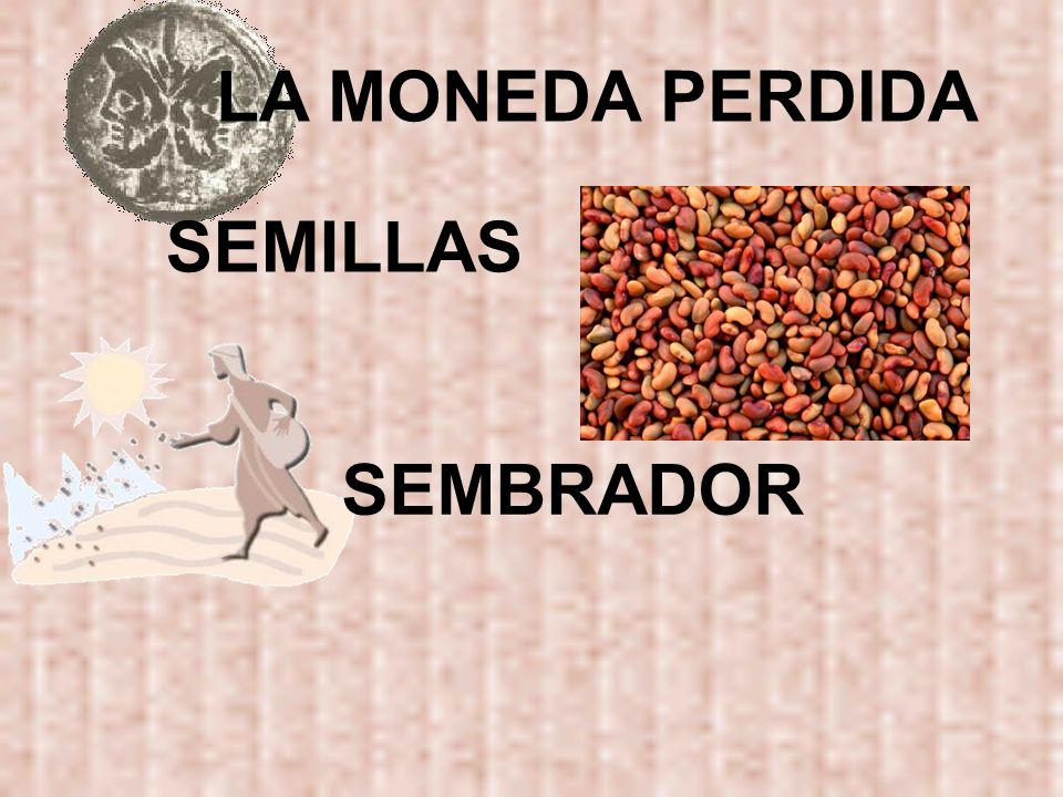 LA MONEDA PERDIDA SEMILLAS SEMBRADOR
