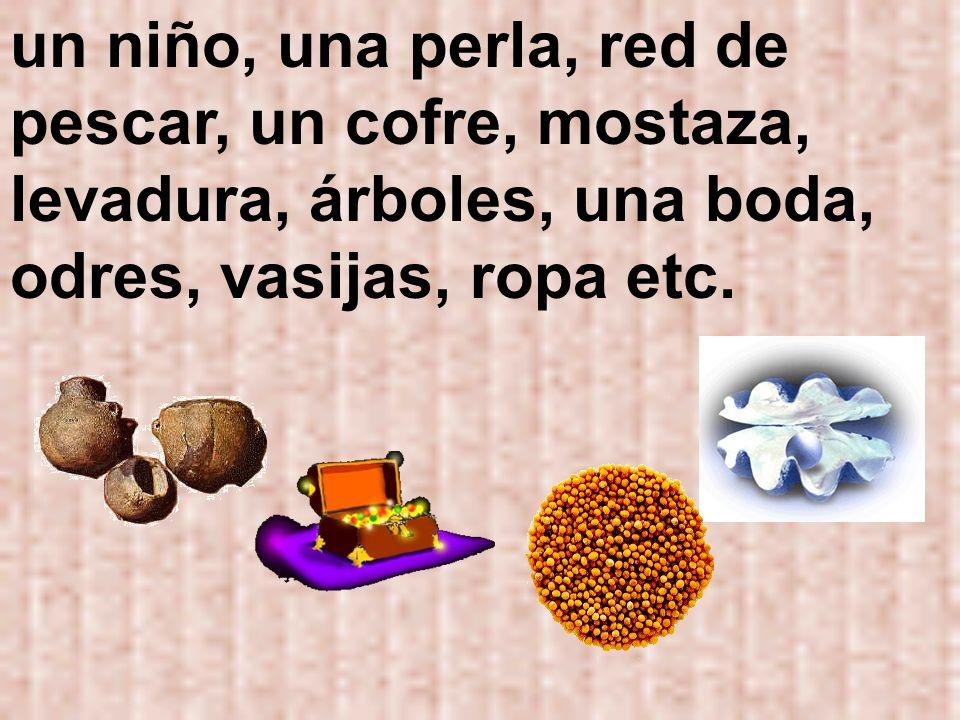 un niño, una perla, red de pescar, un cofre, mostaza, levadura, árboles, una boda, odres, vasijas, ropa etc.