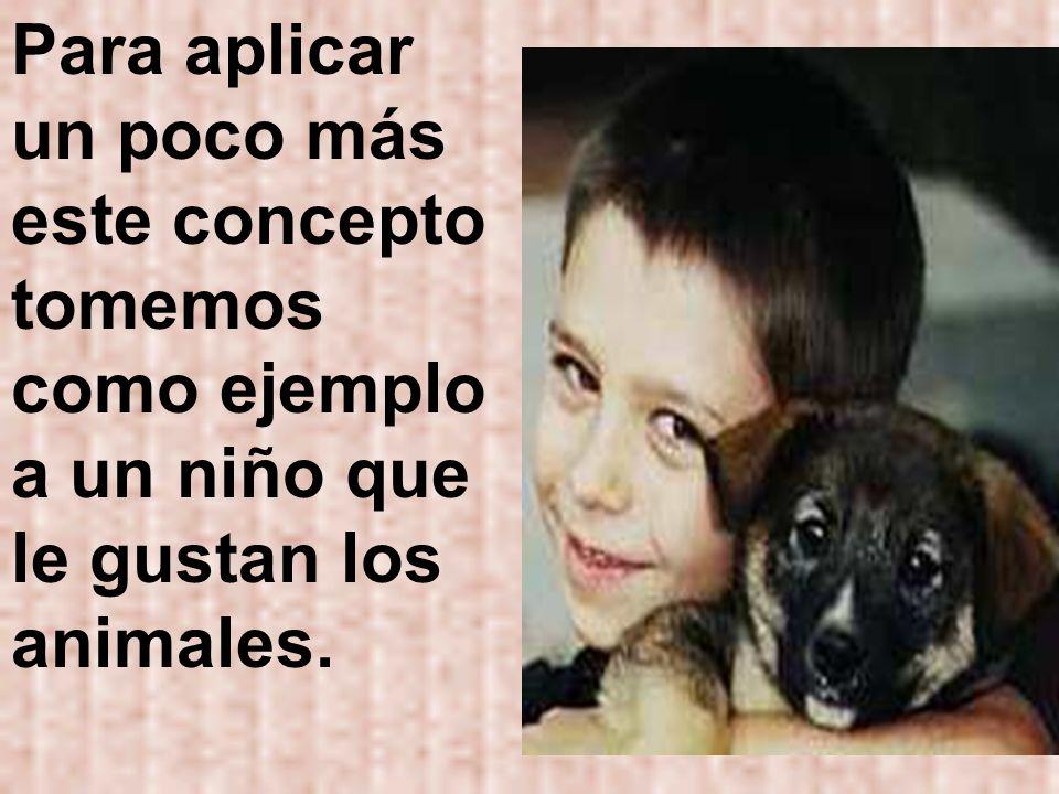 Para aplicar un poco más este concepto tomemos como ejemplo a un niño que le gustan los animales.