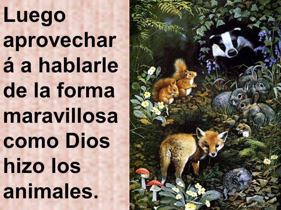 Luego aprovechará a hablarle de la forma maravillosa como Dios hizo los animales.