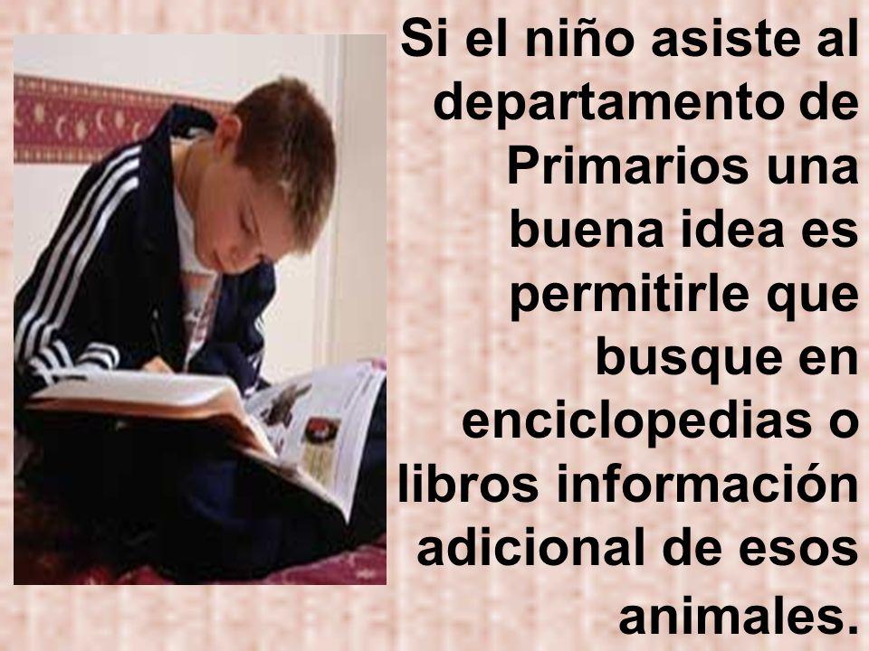 Si el niño asiste al departamento de Primarios una buena idea es permitirle que busque en enciclopedias o libros información adicional de esos animales.