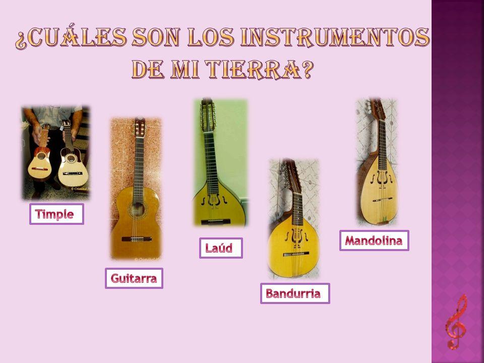 ¿Cuáles son los instrumentos de mi tierra