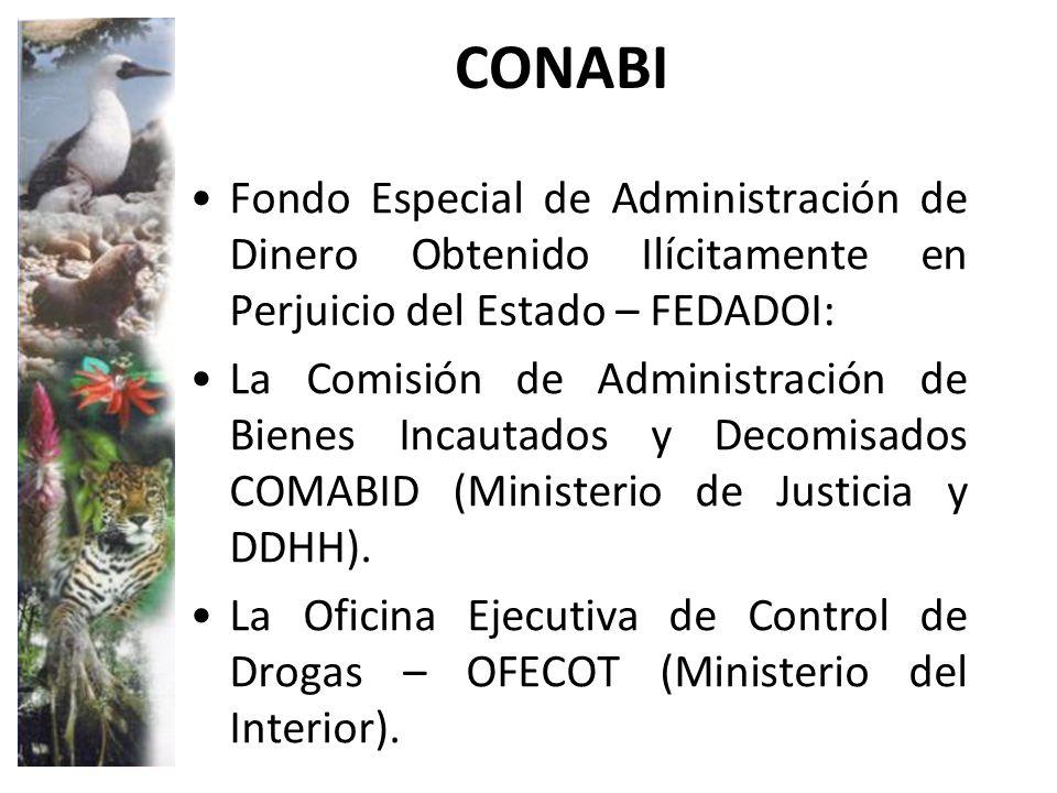 Miner a ilegal informal i c sar a ipenza ppt descargar for Ministerio interior y justicia intranet