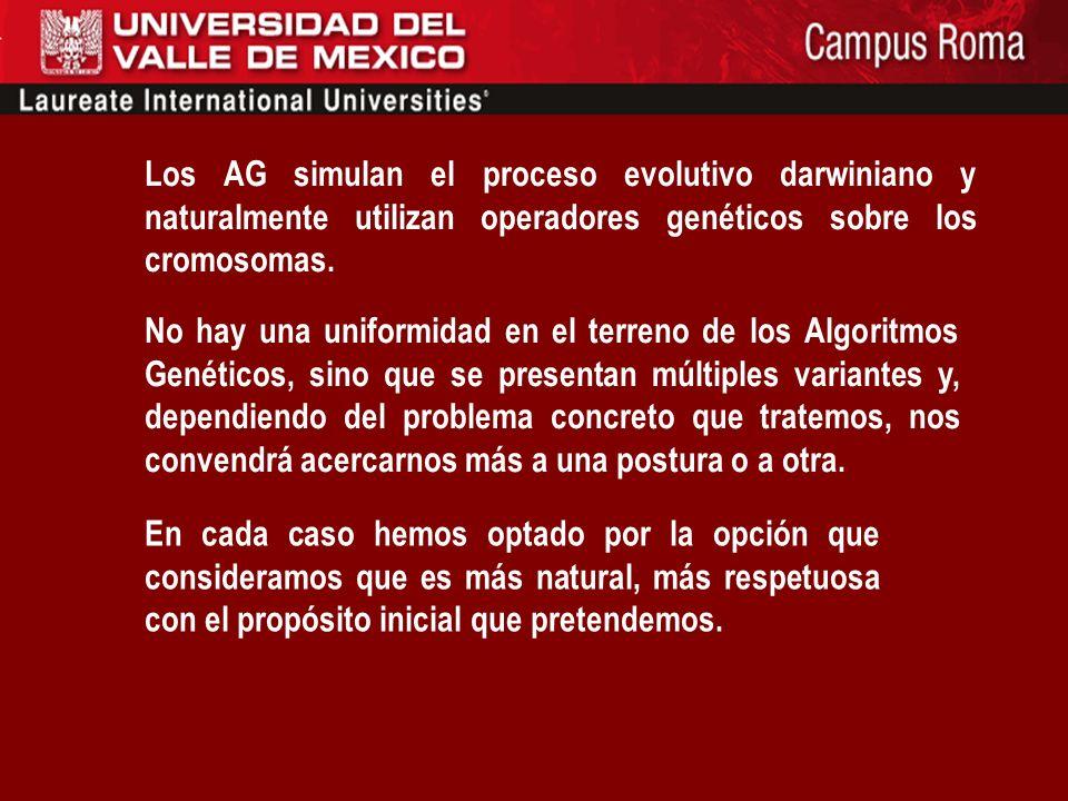 Los AG simulan el proceso evolutivo darwiniano y naturalmente utilizan operadores genéticos sobre los cromosomas.