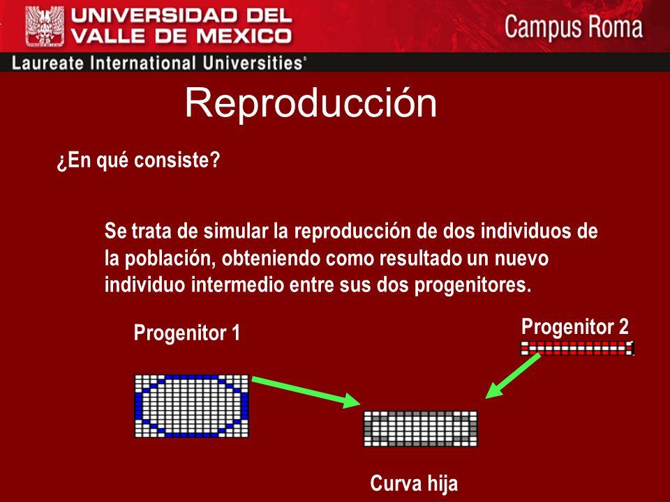 Reproducción ¿En qué consiste