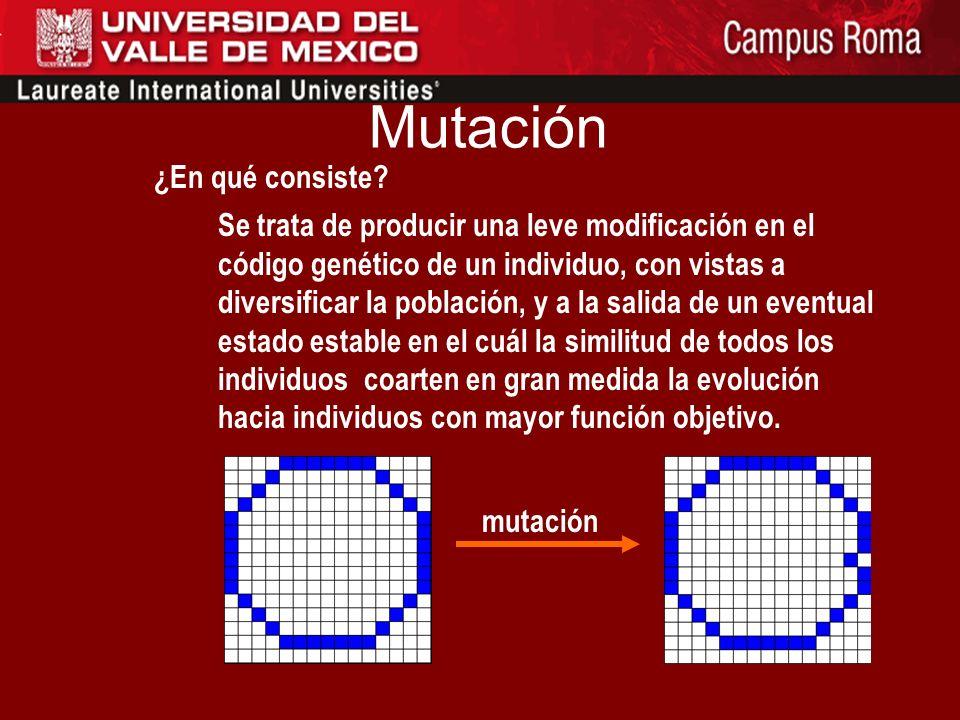 Mutación ¿En qué consiste