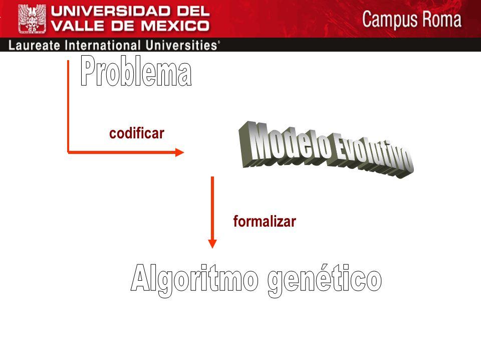 Problema codificar Modelo Evolutivo formalizar Algoritmo genético