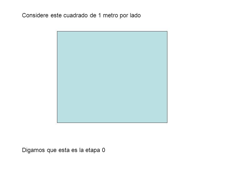 Considere este cuadrado de 1 metro por lado ppt descargar for Tilapias por metro cuadrado