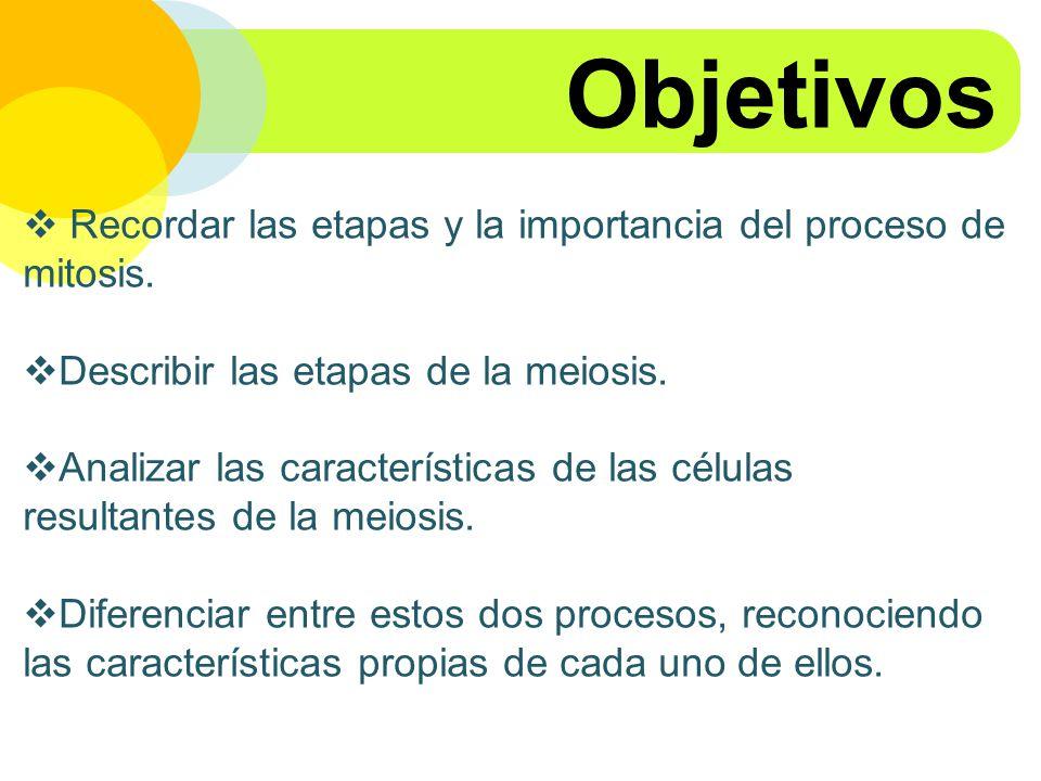 Objetivos Recordar las etapas y la importancia del proceso de mitosis.