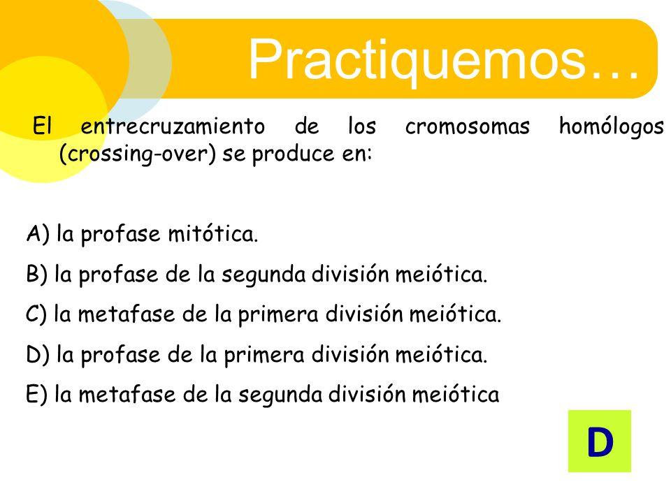 Practiquemos… El entrecruzamiento de los cromosomas homólogos (crossing-over) se produce en: A) la profase mitótica.