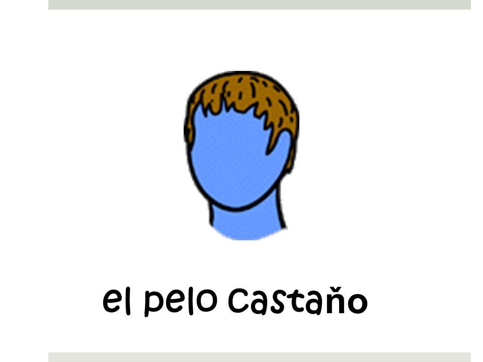 el pelo castaňo