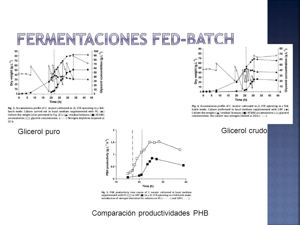 FERMENTACIONES FED-BATCH